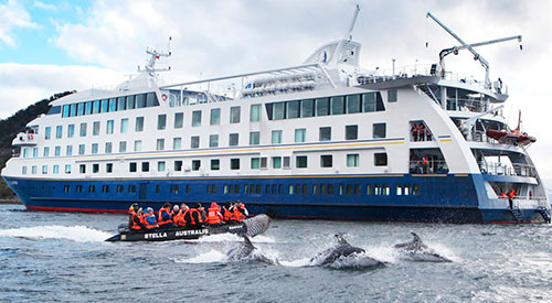 Australis Darwin's Route Cruise From Ushuaia